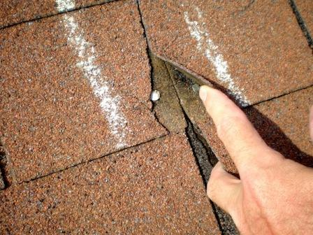 Contraction of the Shingles | Best Choice Home Inspections