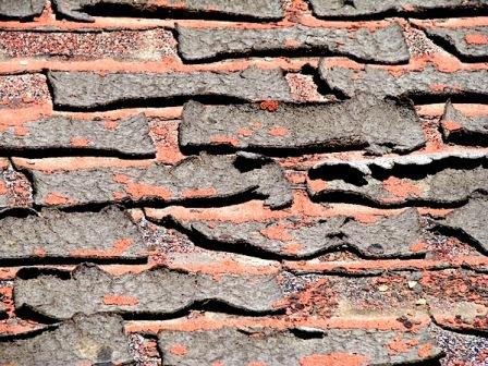 Shingle Delamination | Best Choice Home Inspections